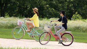 Велосипеды vs Электромобили